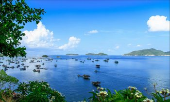 Vietnam strives to become strong sea-based country