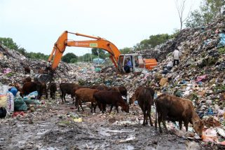 Phu Quoc waste treatment project to be revoked