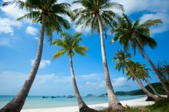 Which are must-do things in Phu Quoc in three-day and two-night?